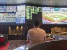 Key Traits To Become A Successful Sports Bettor